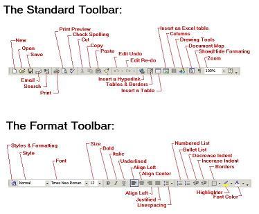 Standard and Format toolbar in Word